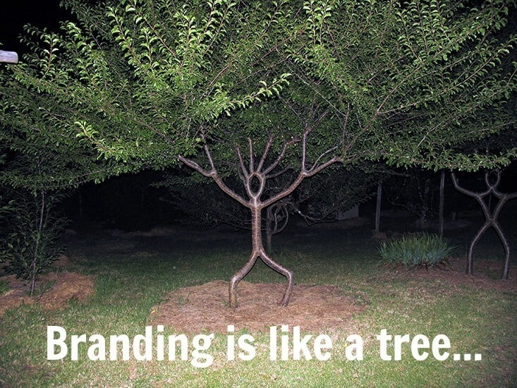 They Laughed at Me When I Said That Branding Was Like a Tree, But Then They Saw THIS!