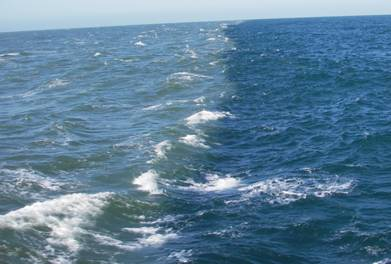 Tweet Chat: Finding Your Blue Ocean Strategy