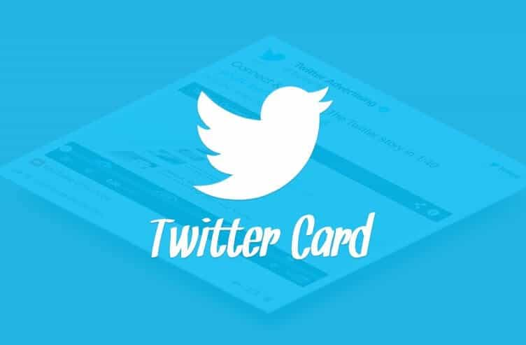 Bet You Haven't Tried These Twitter Card Marketing Ideas