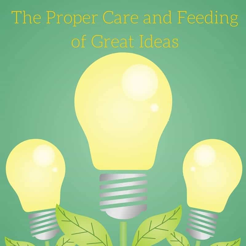 The Proper Care and Feeding of Great Ideas: The Birth of Bizapalooza